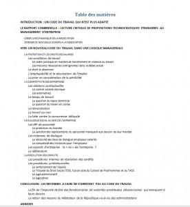 Plan du projet de livre Jérôme Turquey